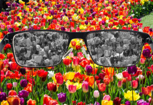 Color Vision Glasses in Burlington and Davenport, Iowa
